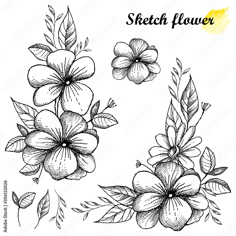 Fototapeta Set of hand drawn sketch of open flower bunch with bud and leaves in black isolated on white background.
