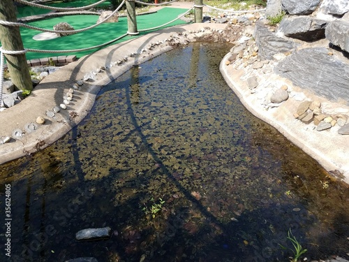 rocks and water and algae at miniature golf course Fototapet
