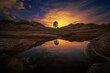A lone tree illustrates strength and solidarity in a colorful reflecting pool of water in the dry desert landscape on the boarder of Arizona and Utah at sunset.