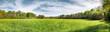 Leinwanddruck Bild Wiese mit Jäger-Hochsitz und Wald im Sommer - Panorama