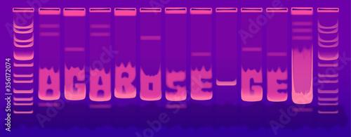 Obraz na plátně DNA electrophoresis agarose gel under uv light