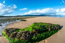 Brora Beach Scottish Highlands
