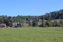 Rievaulx Abbey, North Yorkshire.