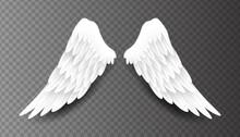 Pair Of Beautiful White Angel ...