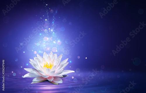 magiczny-kwiat-lotosu-ze-swia