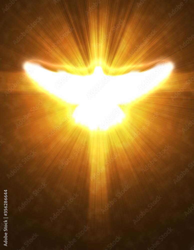 Fototapeta shining dove with rays on a dark