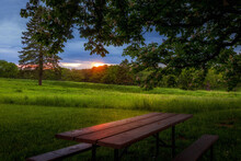 Picnic Table In The Woods At D...