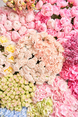 Floral carpet or Wallpaper. Background of mix of flowers. Beautiful flower for catalog or online store. Floral shop and delivery concept. Top view. Copy space