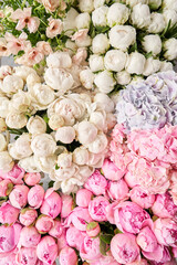 Floral carpet or Wallpaper. Background of pink and white peonies. Morning light in the room. Beautiful peony flower for catalog or online store. Floral shop and delivery concept .