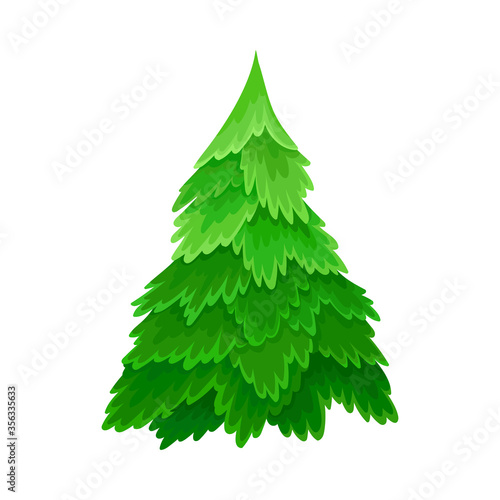Pine or Fir Tree with Needle Leaves as Forest Element Vector Illustration Slika na platnu