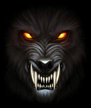 Werewolf Portrait