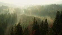 Flying Over Misty Mountain For...