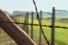 Close Up Steel Fencing Barbed ...
