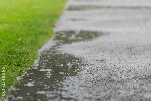 Raindrops splashing into puddles on footpath through public park on rainy day Canvas Print