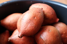 "Japanese Sweet Potatoes ""Anno Imo"", A Specialty Of Tanegashima Island In Kyushu Region. It's So Sweet Like Honey."