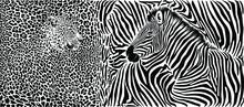 Zebra And Leopard Skin Pattern...