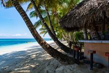 Paradies Auf Erden Mit Einem Weißen Strand Unter Palmen Mit Einer Bar Und Blauem Himmel