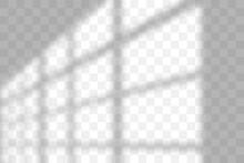 Vector Transparent Window Shad...