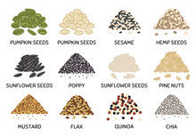 Set Of Hand Drawn Vector Handful Of Seeds