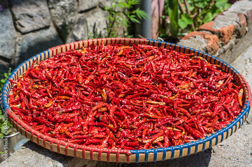Chilli peppers drying on the sun Stock photo. Canvas Print