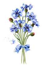 Bouquet Of Blue Flowers Cornflower With A Ribbon. Hand Drawn Watercolor Illustration, Isolated On White Background