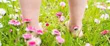 Small Baby Bare Legs,feet Of Little Girl In Grass With Flowers Of Daisies.Summer Concept.Kids Walk In Garden,field,meadow.Quarantine End,coronavirus Covid-19.Staycation In Vacation Home,country House