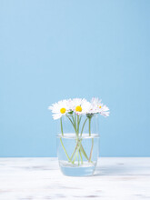 Few Daisies On A Vase Placed On A Wooden Table, Isolated On A Blue Bac