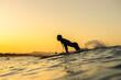 Leinwanddruck Bild - Surfer girl at sunset, Byron Bay Australia