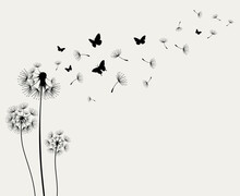Dandelions And Butterfly On Th...
