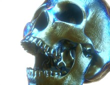 Metallic Scull Hyperrealistic ...