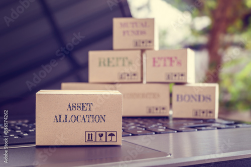 Photo Online asset allocation / portfolio risk diversification for long-term sustainable growth concept : Boxes of financial products e
