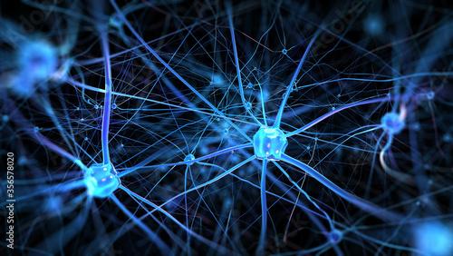 Fotografía Neurons and nervous system