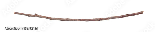Dry branch isolated on white background Fototapete