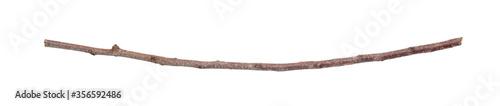 Fotografie, Obraz Dry branch isolated on white background