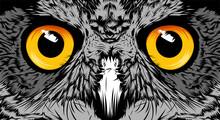Face Owl Illustration Sketch P...