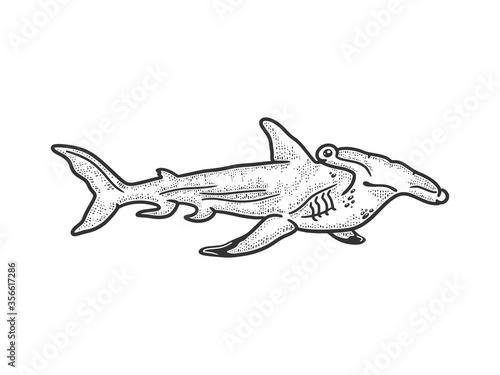 Hammerhead shark sketch engraving vector illustration Poster Mural XXL