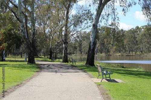 Canvas Print Australian parkland with native eucalyptus trees adjacent to Lake Benalla on the Broken River in Victoria, Australia