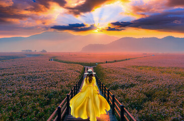 Fototapeta Mosty .Asian tourists walk on a wooden bridge to see the beauty of the sunrise on the grasslands in Suncheon Bay, South Korea.