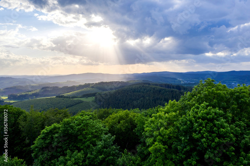 a forest landscape in the evening from above - 356780072