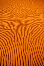 Sand Dune Waves In Desert Of S...