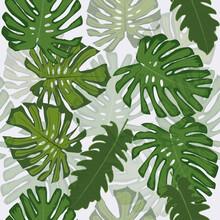 Design Tropical Foliage Vector...