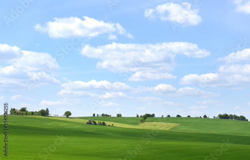 Obraz Idyllische Weite der Landschaft in der Sächsischen Schweiz - fototapety do salonu