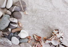 Scattered Seashells On The Table