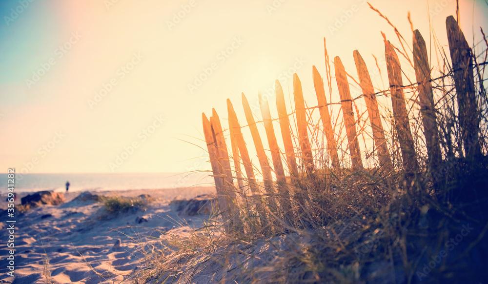 Fototapeta Dune de sable et barrière en bord de mer sur la plage.