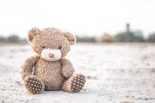 Closeup Teddy Bear Toy Laying  Alone In The  Ground