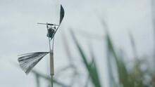 Bird Repellent In The Fields