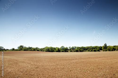 Cuadros en Lienzo farmland near the small essex village of chappel in essex