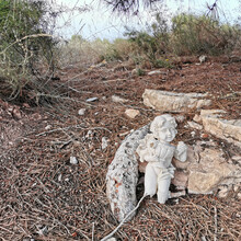 The Broken Sculpture Is Dumped In The Ground Of Forest