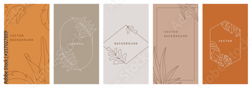 Fotografie, Obraz Vector design templates in simple modern style with copy space for text, flowers