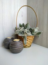 Plant Woolly Stachys With Soft Fluffy Leaves In A Wicker Basket With Two Shaffron Candles On A Light Wood Background